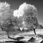 Fooling around with Infrared