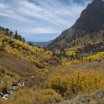 Fall Foliage in the Eastern Sierra
